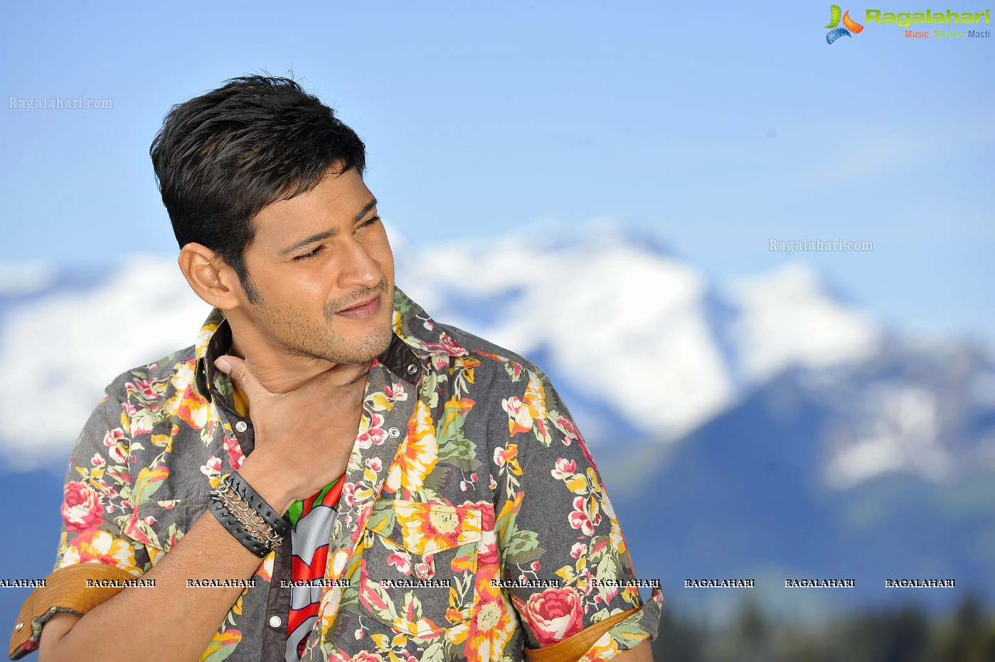 Mahesh Babu Dhookudu Movie Stills, HD Gallery, Images
