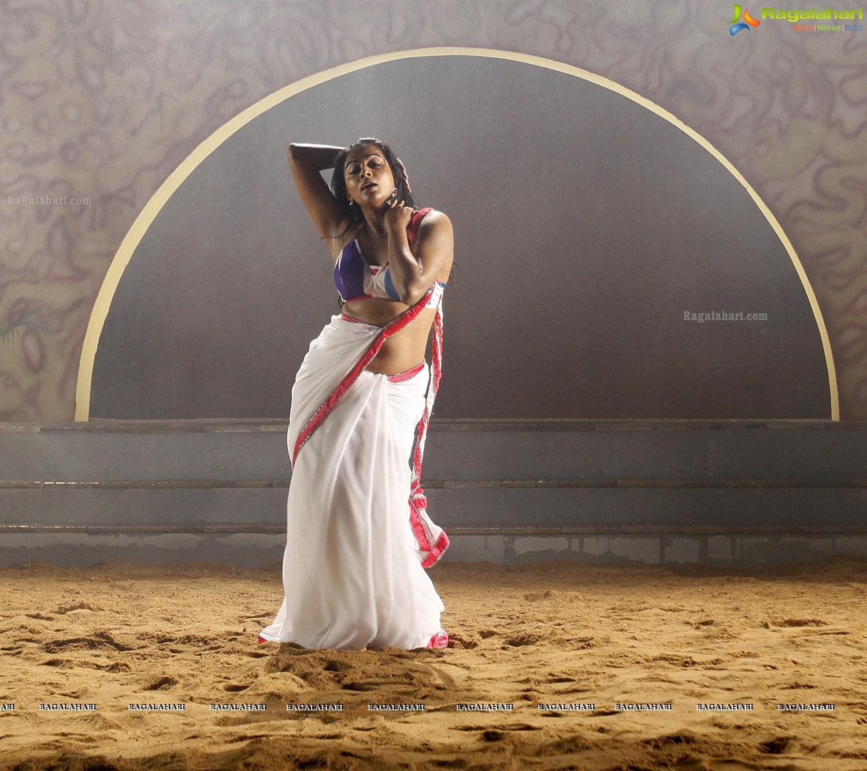 Priyamani Stills From Tikka, Photo Gallery